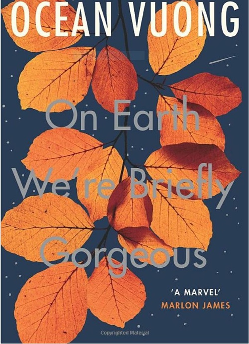 Young Stationers' Book Club - On Earth We're Briefly Gorgeous
